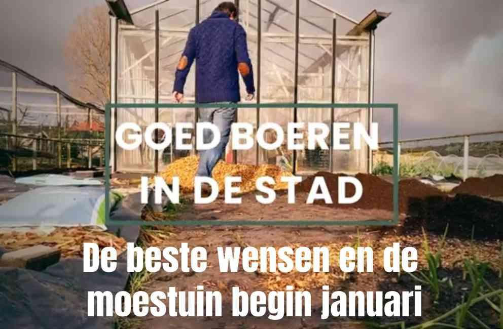 Moestuin begin januari