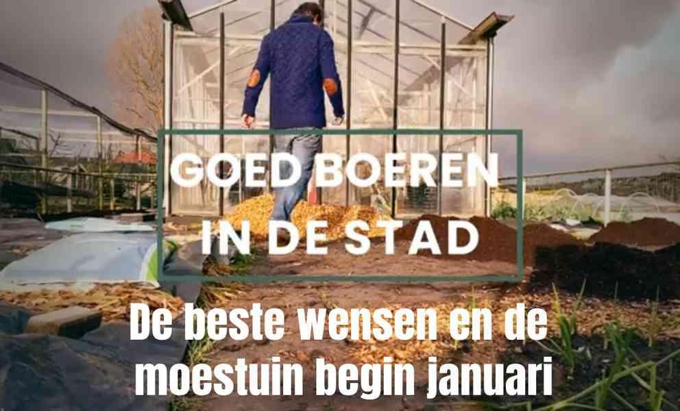 De moestuin begin januari en de beste wensen