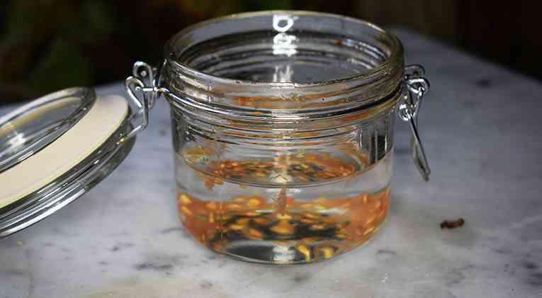 Tomatenzaden laten fermenteren